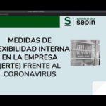 WEBINAR SEPIN: MEDIDAS DE FLEXIBILIDAD INTERNA EN LA EMPRESA (ERTE) FRENTE AL CORONAVIRUS.